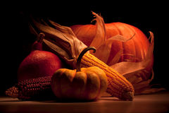 Pumpkin and corn group Royalty Free Stock Image