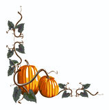 Pumpkin Corner Group Royalty Free Stock Images
