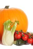 Pumpkin, courgette, fennel and tomato. Group of vegetables (pumpkin, onion, courgette, fennel, tomato) isolated on the white background Stock Photography