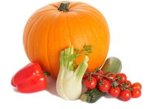 Pumpkin, courgette, fennel and tomato. Group of vegetables (pumpkin, onion, courgette, fennel, tomato) isolated on the white background Royalty Free Stock Image
