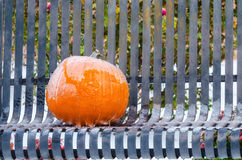 Pumpkin covered with ice Royalty Free Stock Photo