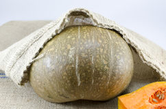 Pumpkin covered with a old tablecloth Royalty Free Stock Image