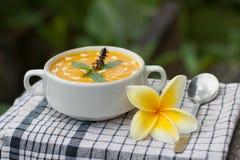 Pumpkin cream soup with coconut cream. Vegetarian pumpkin cream soup with coconut cream Stock Images