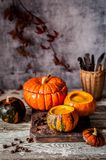 Cream Soup in Hollowed Pumpkins. Pumpkin Cream Soup in Hollowed Pumpkin Bowls, copy space for your text Royalty Free Stock Image