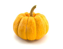 Pumpkin,cucurbit. Pumpkin is a vegetable with edible yellow fruit Stock Photography