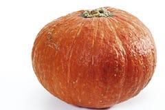 Pumpkin, Cucurbita Stock Photo