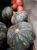 Large pumpkins are very fresh and ready for sale on the market stock photo