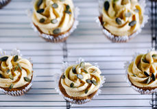 Pumpkin cupcake with buttercream and pumpkin seeds, fresh baking Stock Photography