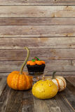 Pumpkin cupcake with decorative fall gourds Stock Photography