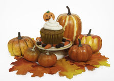 Pumpkin Cupcake in Fall Setting Royalty Free Stock Photo