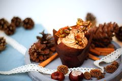 Pumpkin cupcake with pumpkin spice cream cheese frosting and caramel shard Royalty Free Stock Photos