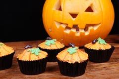 Pumpkin cupcakes Stock Photos