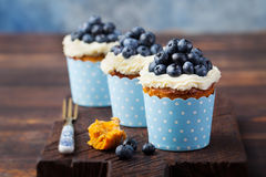 Pumpkin cupcakes with cream cheese, blueberries Stock Photo
