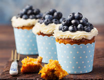 Pumpkin cupcakes decorated with cream cheese frosting and fresh blueberries on a wooden background Royalty Free Stock Images