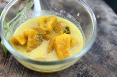 Pumpkin curry. Stock Image