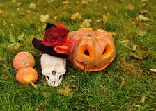 Pumpkin with cut out eyes and a smile and a skull on the background of grass and autumn leaves. At celebration of halloween royalty free stock photos