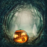 Pumpkin in dark forest stock illustration