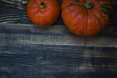 Pumpkin on a dark wooden background royalty free stock image