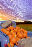 Pumpkin Days. A truck loaded with pumpkins in a colorful landscape Stock Photos