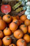 Pumpkin Decoration Stock Photos