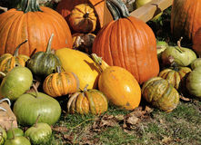 Pumpkin decoration Royalty Free Stock Images