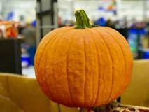 Pumpkin decoration background Royalty Free Stock Images