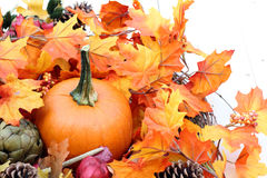Pumpkin. Decoration of Fall season for Thanksgiving or Halloween Royalty Free Stock Photos