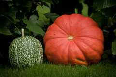 Pumpkin decoration Royalty Free Stock Photos