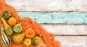 Pumpkin decoration on wooden background Royalty Free Stock Image