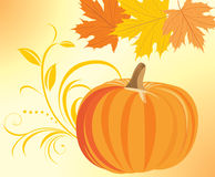 Pumpkin with decorative sprig and maple leaves. Illustration Stock Photo