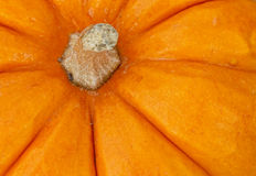 Pumpkin detail Royalty Free Stock Photo