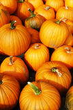 Pumpkin display during Harvest Festival in New England, USA. Stock image of pumpkin display during Harvest Festival in New England, USA Stock Image