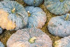 Pumpkin display on a haystack Stock Photos