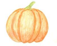 Pumpkin drawing Royalty Free Stock Photos