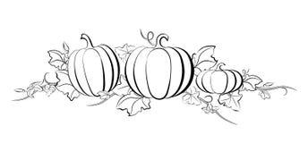 Pumpkin Drawing Set Royalty Free Stock Images