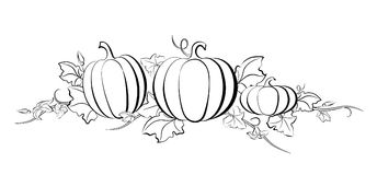 Pumpkin drawing set. Isolated outline vegetable, plant, leaves, flower and seeds. Hand drawn harvest illustration royalty free illustration