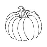 Pumpkin, liner Royalty Free Stock Photo