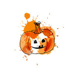 Pumpkin, drawing by watercolor and ink with paint splashes on wh. Ite background.Vector illustration royalty free illustration