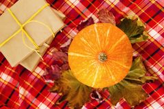Pumpkin with dry colorful leaves, gift boxes wrapped of craft paper and yellow ribbons on a red checkered towel, top view. Autumn still life royalty free stock images