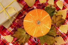Pumpkin with dry colorful leaves, gift boxes wrapped of craft paper and yellow ribbons on a red checkered towel, top view. Autumn still life royalty free stock image