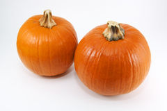 Pumpkin Duo. Two high resolution pumpkins isolated on a white background Stock Images