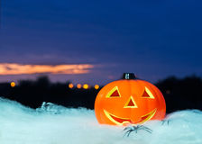Pumpkin at dusk. Halloween pumpkin on a white spider web at sunset Stock Photography