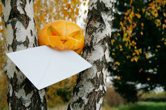 Pumpkin eating letter in autumn leaves Royalty Free Stock Photos