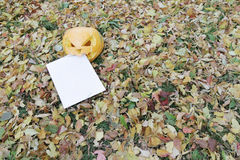 Pumpkin eating letter in autumn leaves Royalty Free Stock Photography
