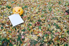 Pumpkin eating letter in autumn leaves Stock Photos