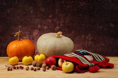 Pumpkin and ethnic bag of wool with fruits Royalty Free Stock Images