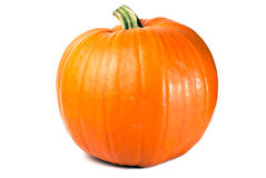 Pumpkin exempted. Orange pumpkin isolated on white copy space Royalty Free Stock Photography