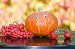 Pumpkin with eyes and Rowan Royalty Free Stock Photography
