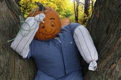 Pumpkin Face Royalty Free Stock Image