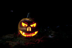 Pumpkin face Royalty Free Stock Images